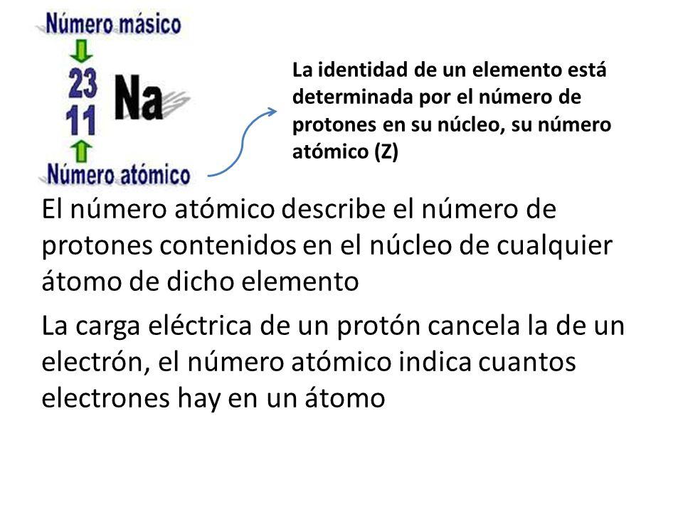 La identidad de un elemento está determinada por el número de protones en su núcleo, su número atómico (Z)