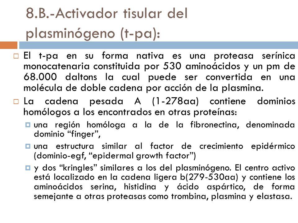8.B.-Activador tisular del plasminógeno (t-pa):