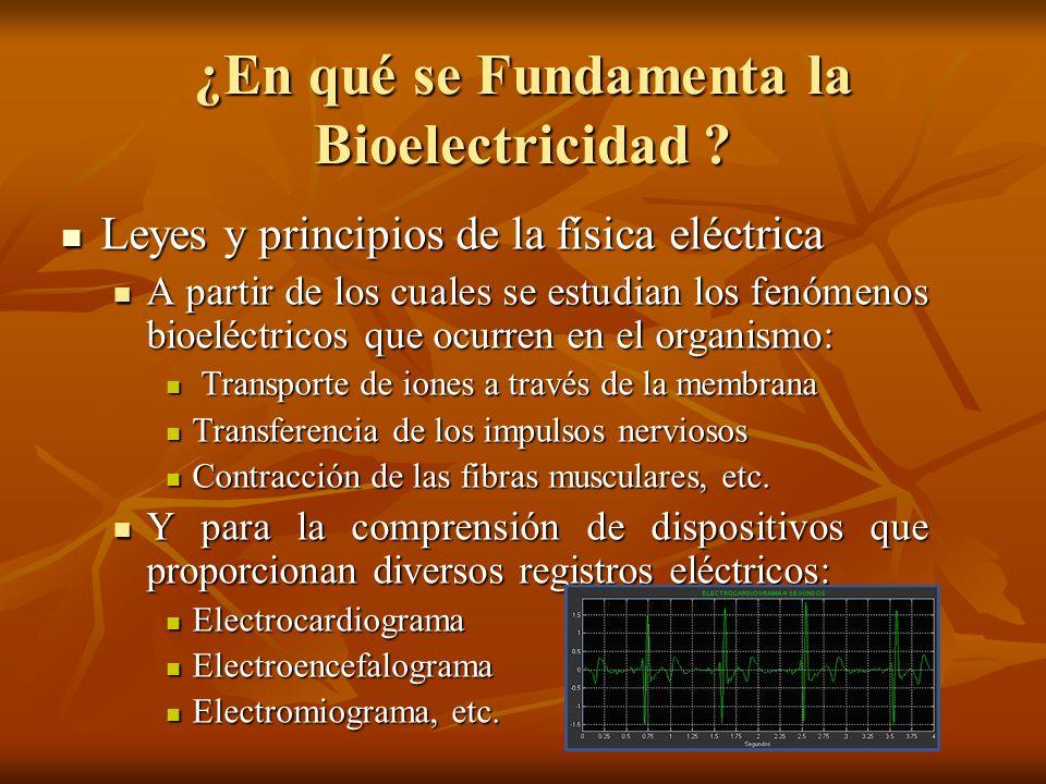 ¿En qué se Fundamenta la Bioelectricidad