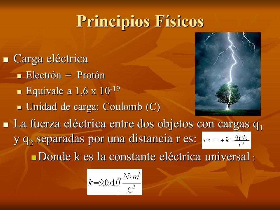 Principios Físicos Carga eléctrica