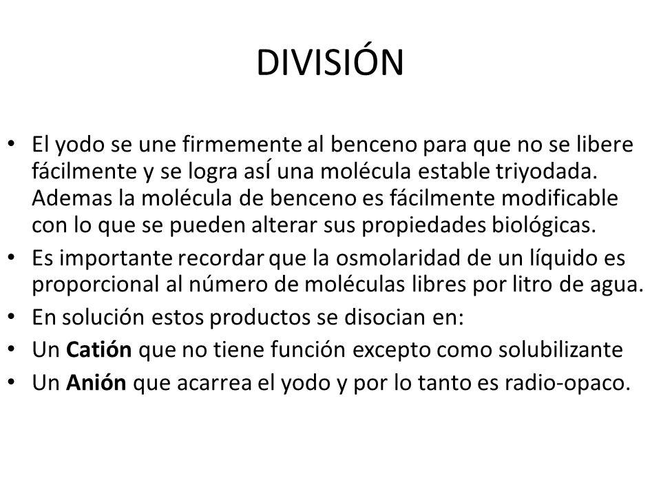DIVISIÓN