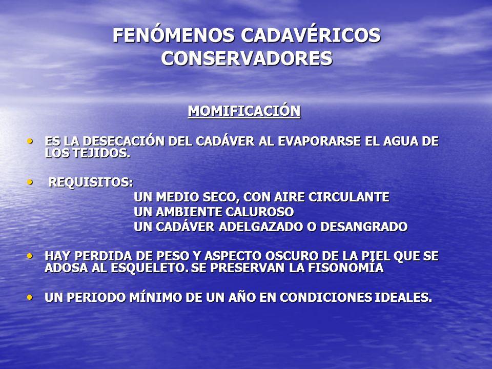 FENÓMENOS CADAVÉRICOS CONSERVADORES