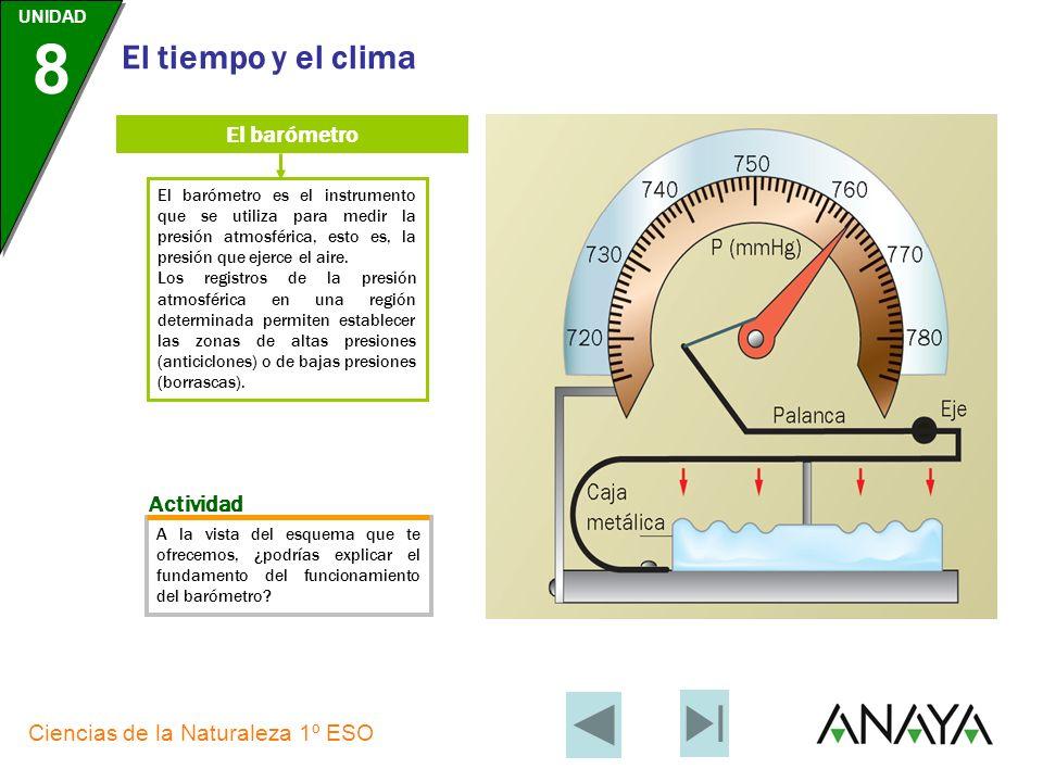 El barómetro Actividad