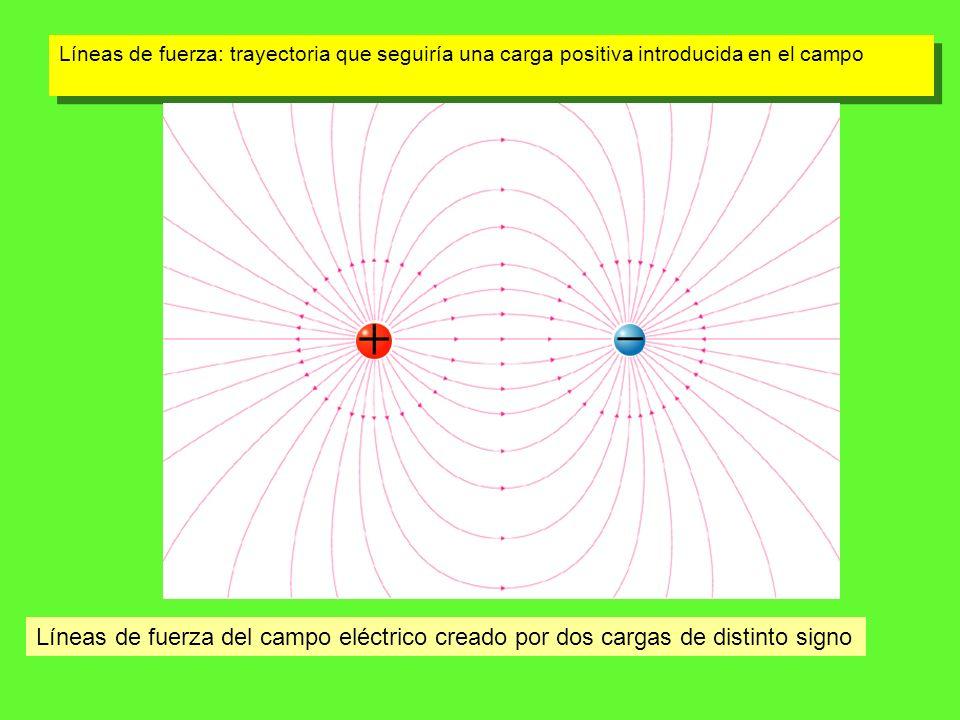 Líneas de fuerza: trayectoria que seguiría una carga positiva introducida en el campo