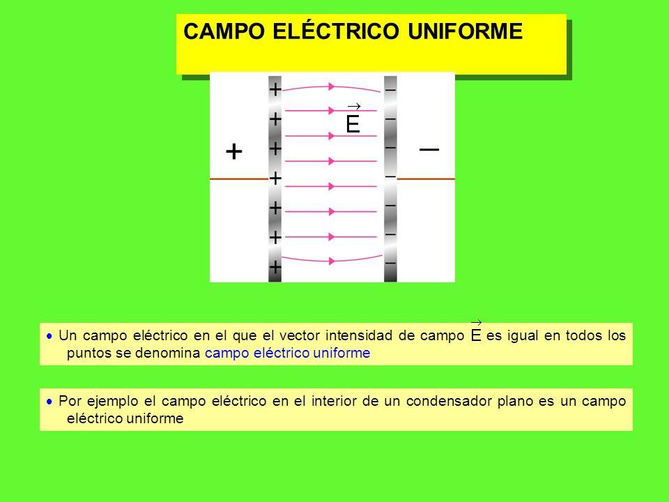 _ + CAMPO ELÉCTRICO UNIFORME