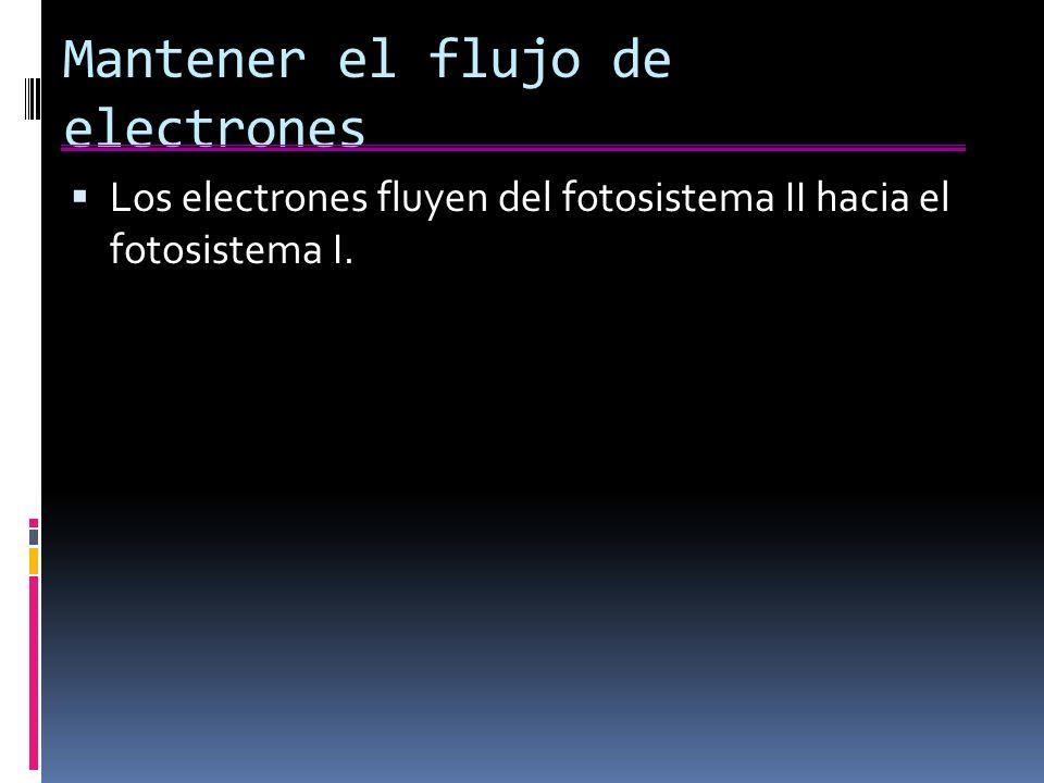 Mantener el flujo de electrones