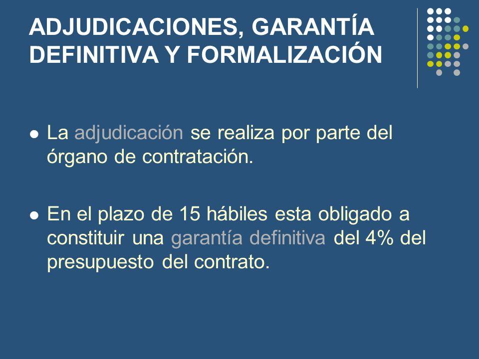 ADJUDICACIONES, GARANTÍA DEFINITIVA Y FORMALIZACIÓN