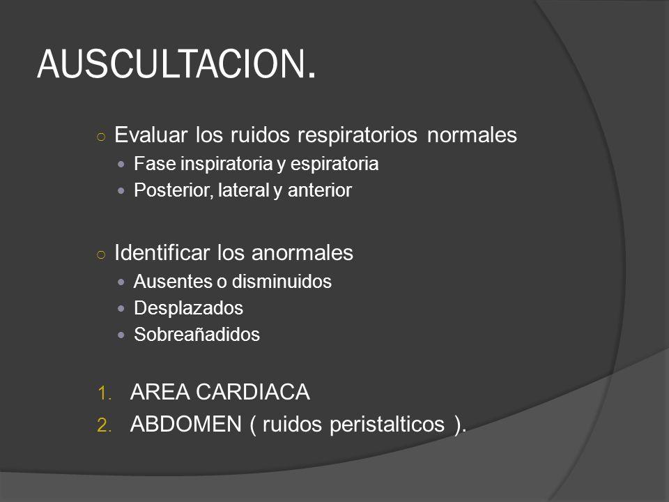 AUSCULTACION. Evaluar los ruidos respiratorios normales