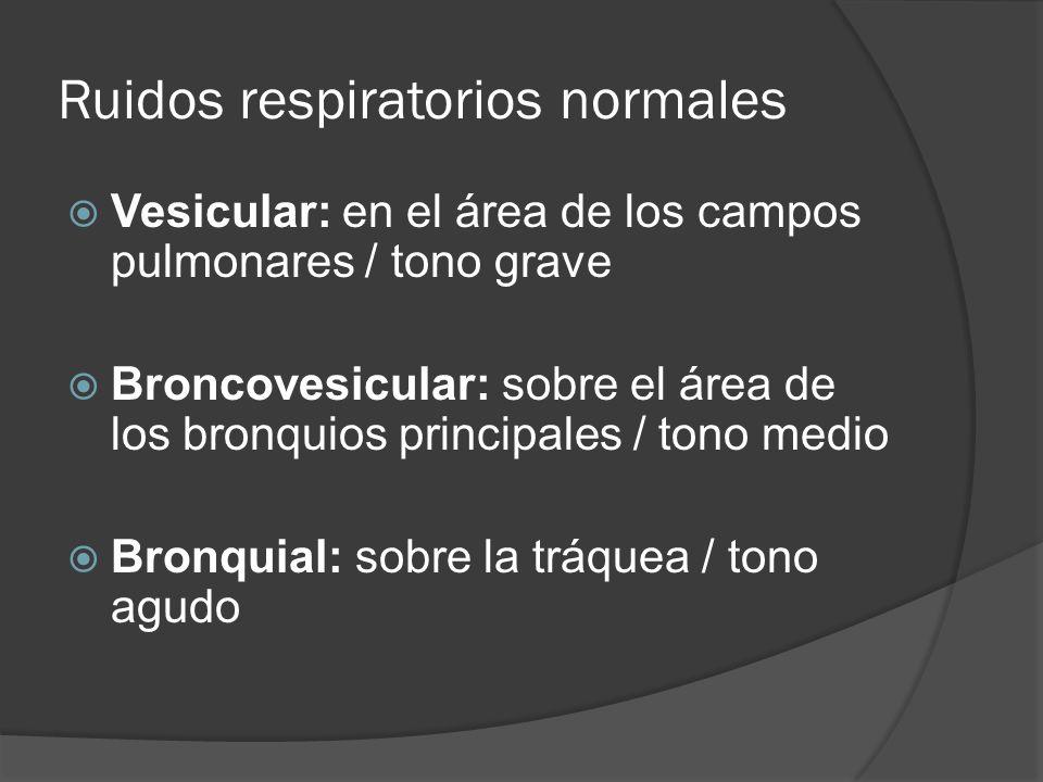 Ruidos respiratorios normales