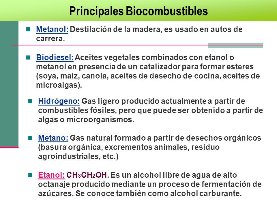 Principales Biocombustibles