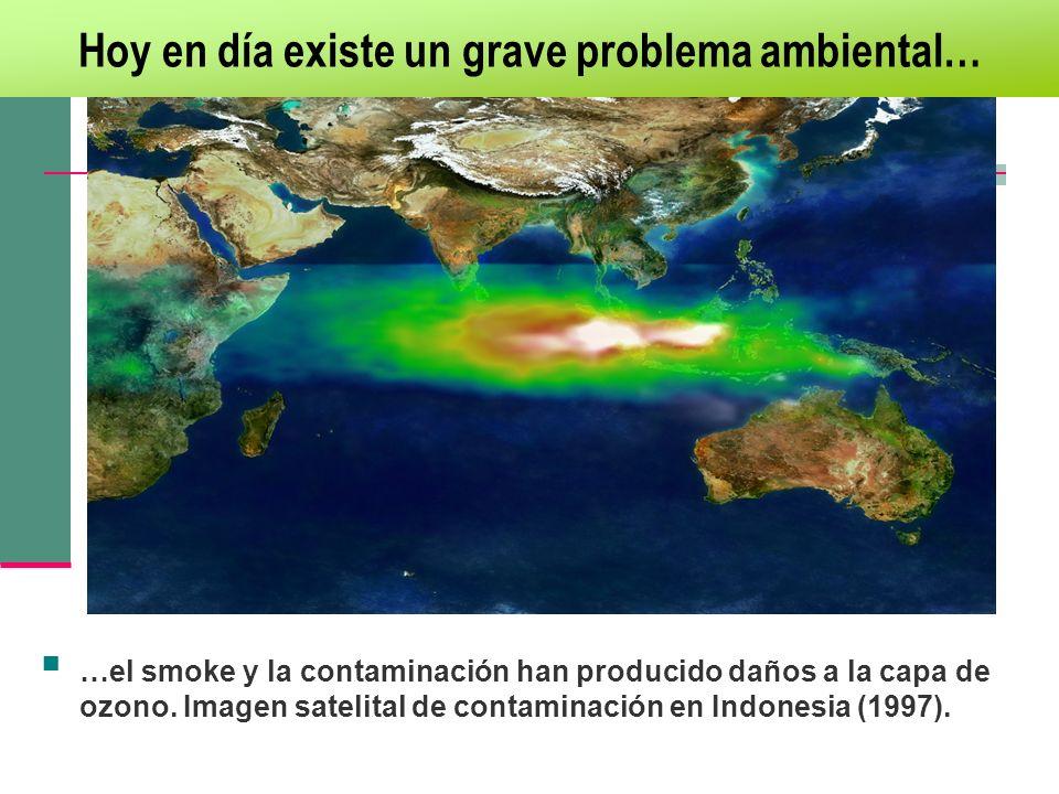 Hoy en día existe un grave problema ambiental…