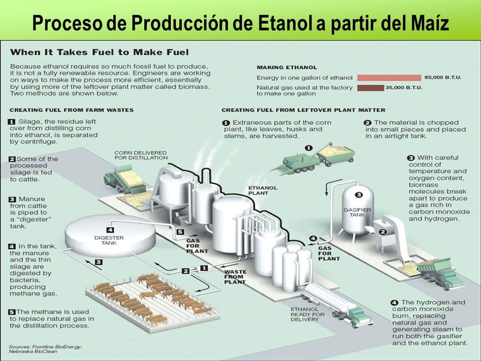Proceso de Producción de Etanol a partir del Maíz
