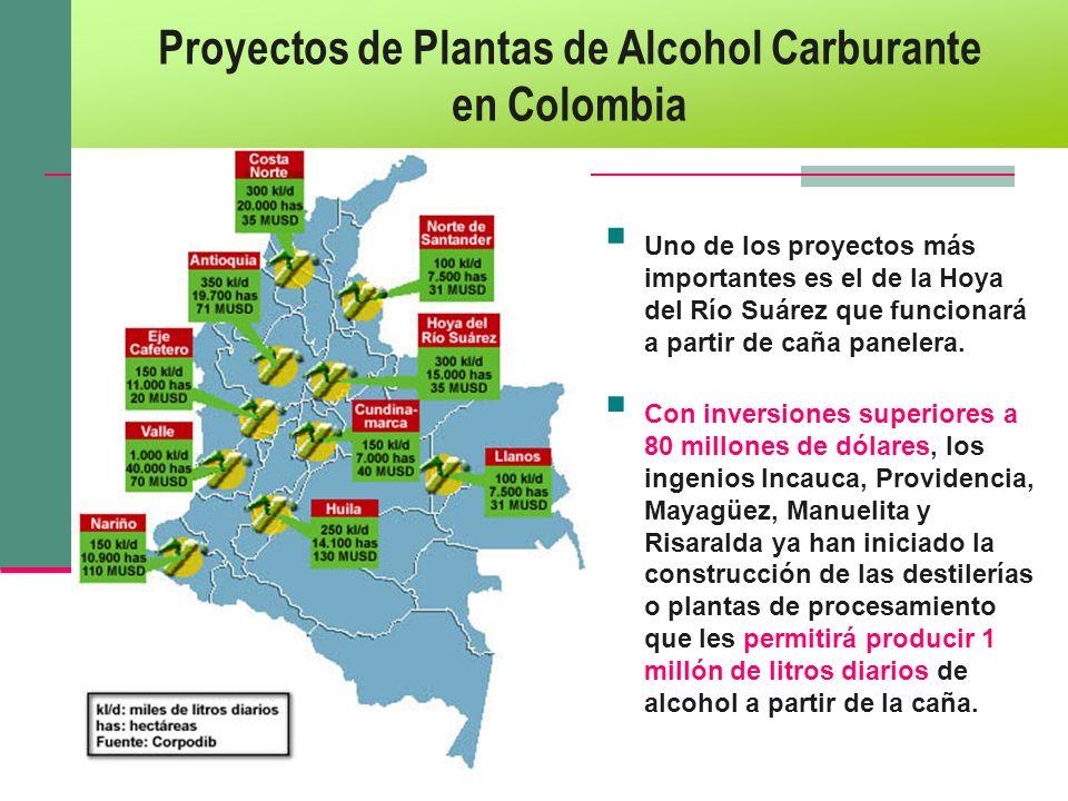 Proyectos de Plantas de Alcohol Carburante