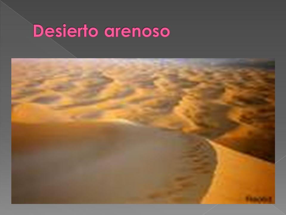 Desierto arenoso