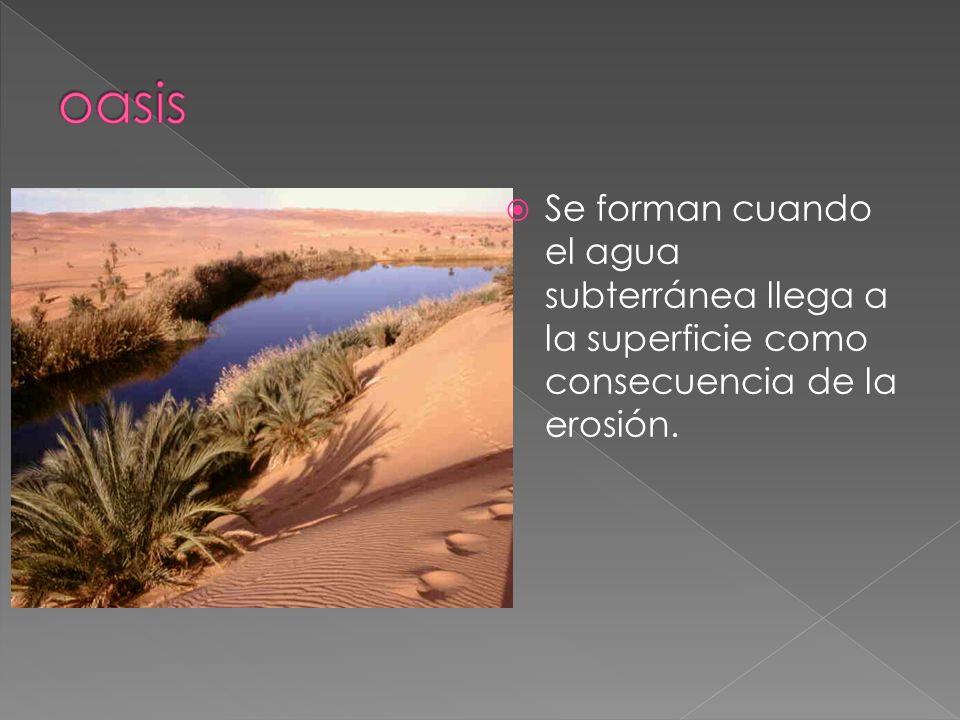 oasis Se forman cuando el agua subterránea llega a la superficie como consecuencia de la erosión.