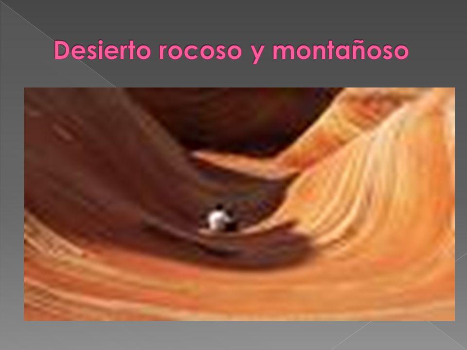Desierto rocoso y montañoso