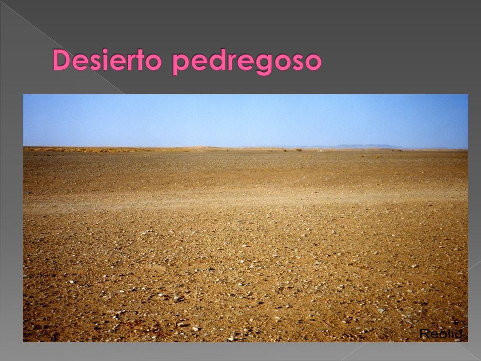 Desierto pedregoso