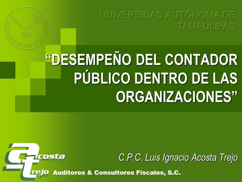 DESEMPEÑO DEL CONTADOR PÚBLICO DENTRO DE LAS ORGANIZACIONES