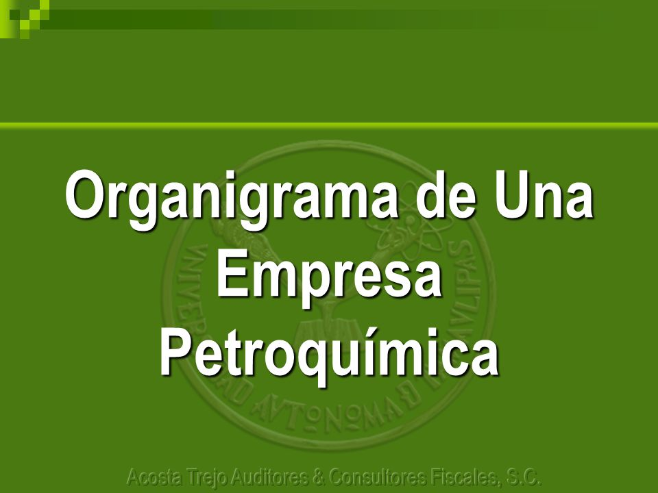 Organigrama de Una Empresa Petroquímica