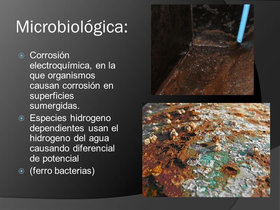 Microbiológica: Corrosión electroquímica, en la que organismos causan corrosión en superficies sumergidas.