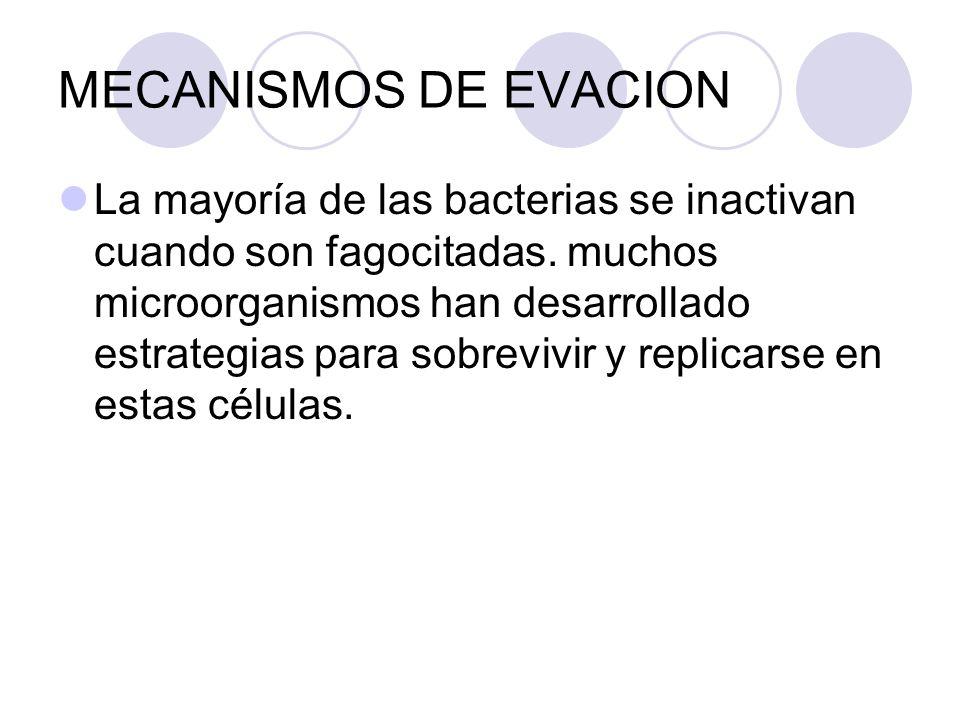 MECANISMOS DE EVACION