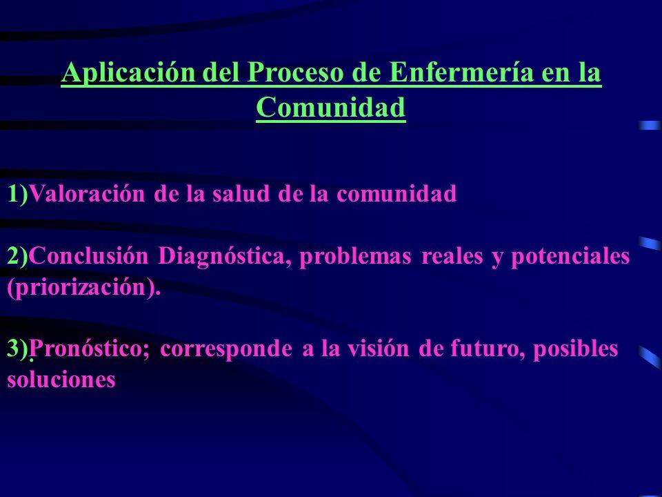 Aplicación del Proceso de Enfermería en la Comunidad
