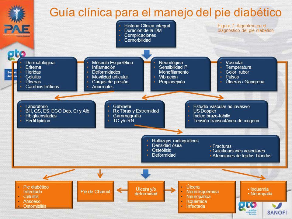 Guía clínica para el manejo del pie diabético