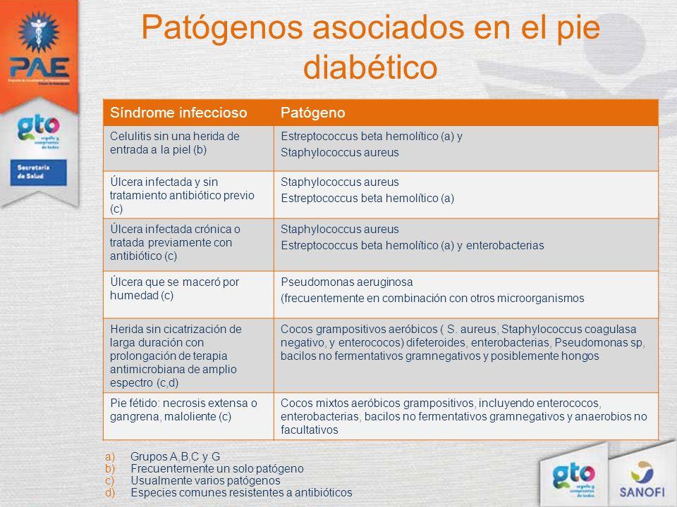 Patógenos asociados en el pie diabético