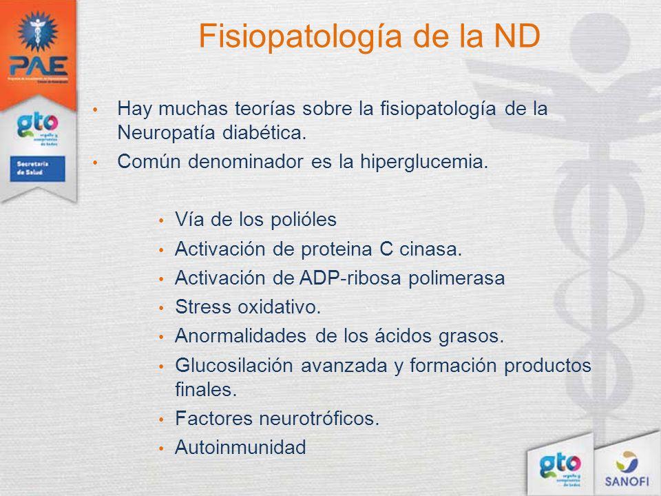 Fisiopatología de la ND