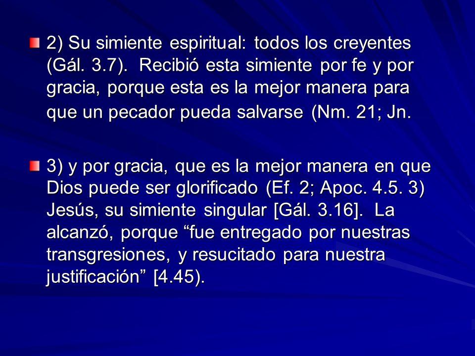 2) Su simiente espiritual: todos los creyentes (Gál. 3. 7)