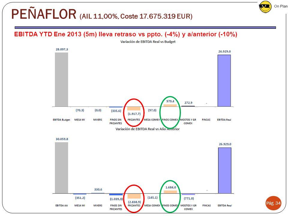 PEÑAFLOR (AIL 11,00%, Coste 17.675.319 EUR)
