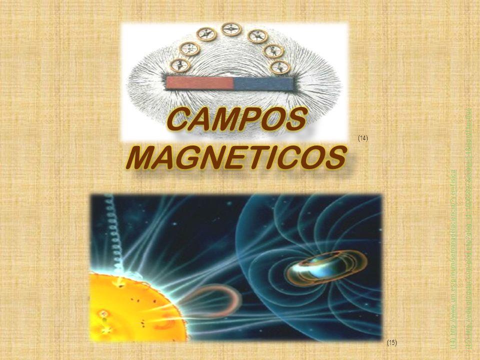 CAMPOS MAGNETICOS (14) (15)