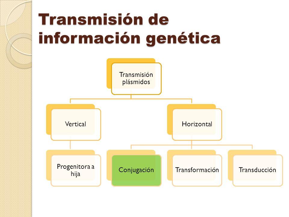 Transmisión de información genética