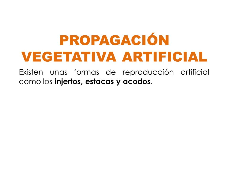 PROPAGACIÓN VEGETATIVA ARTIFICIAL