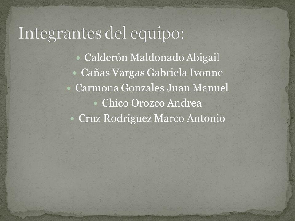 Integrantes del equipo: