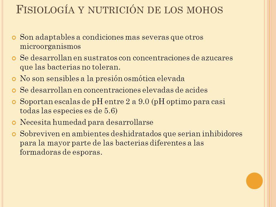 Fisiología y nutrición de los mohos