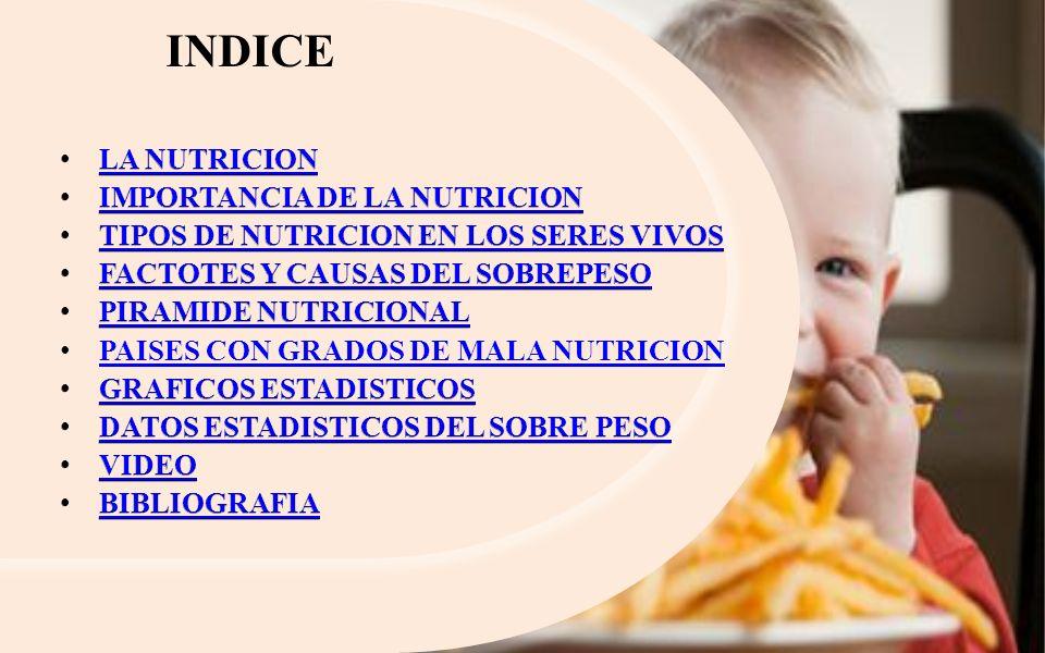 INDICE LA NUTRICION IMPORTANCIA DE LA NUTRICION