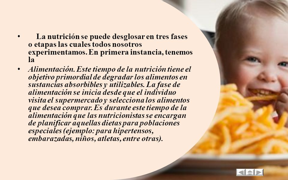 La nutrición se puede desglosar en tres fases o etapas las cuales todos nosotros experimentamos. En primera instancia, tenemos la