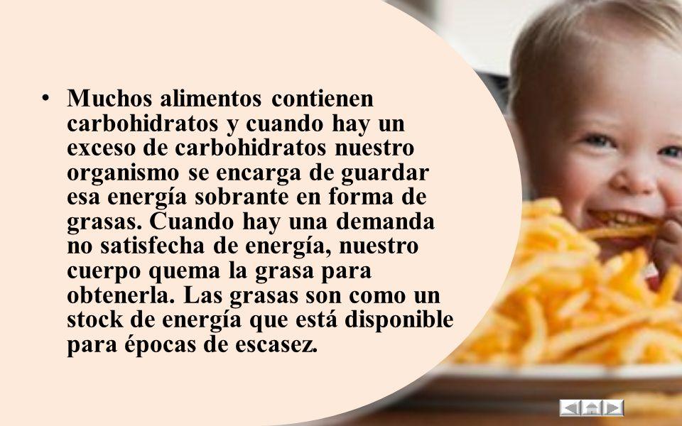 Muchos alimentos contienen carbohidratos y cuando hay un exceso de carbohidratos nuestro organismo se encarga de guardar esa energía sobrante en forma de grasas.