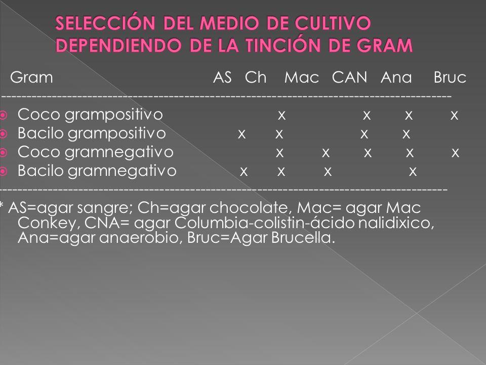 SELECCIÓN DEL MEDIO DE CULTIVO DEPENDIENDO DE LA TINCIÓN DE GRAM