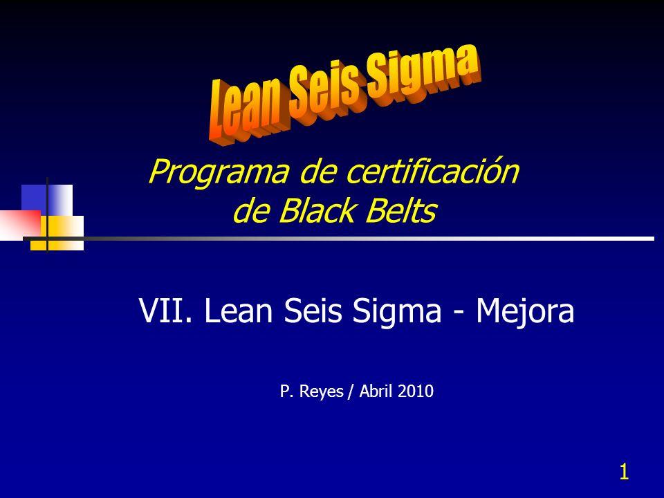 Programa de certificación de Black Belts