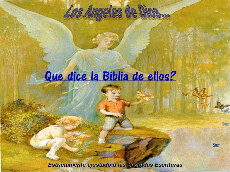 Que dice la Biblia de ellos