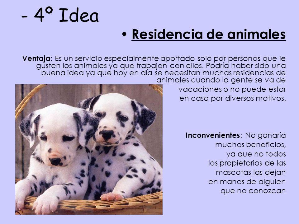 - 4º Idea Residencia de animales