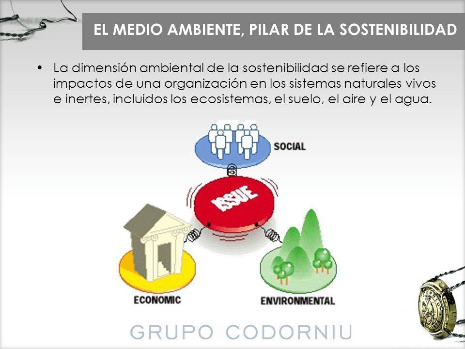 EL MEDIO AMBIENTE, PILAR DE LA SOSTENIBILIDAD