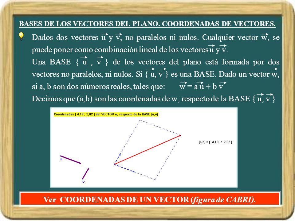 BASES DE LOS VECTORES DEL PLANO. COORDENADAS DE VECTORES.