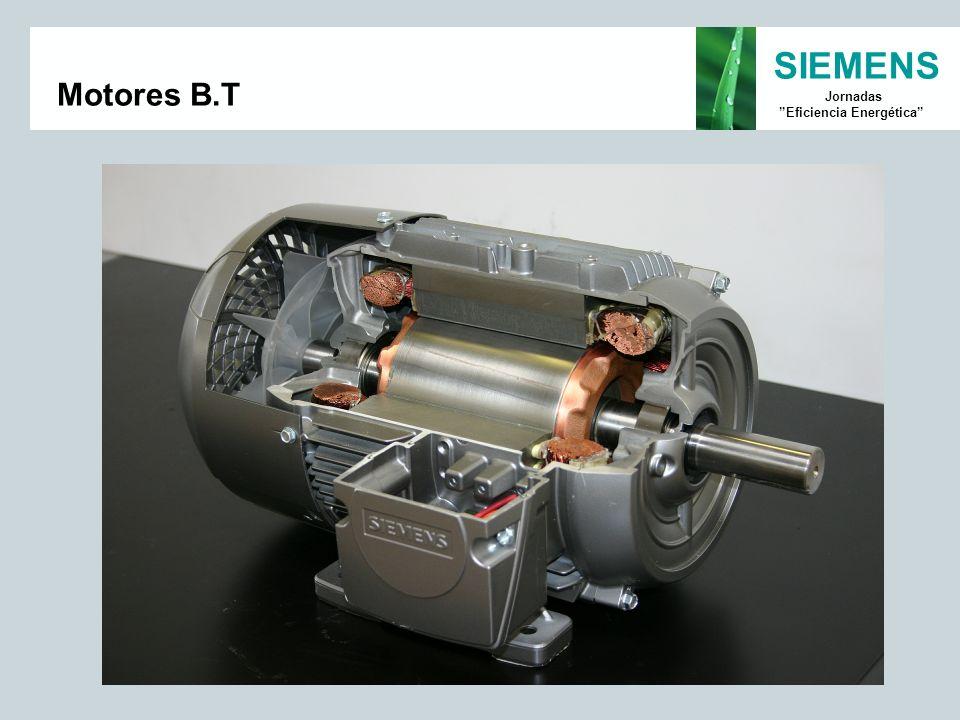 Motores B.T