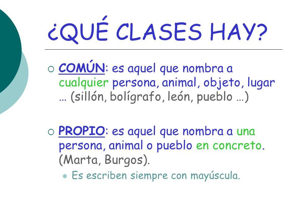 ¿QUÉ CLASES HAY COMÚN: es aquel que nombra a cualquier persona, animal, objeto, lugar … (sillón, bolígrafo, león, pueblo …)
