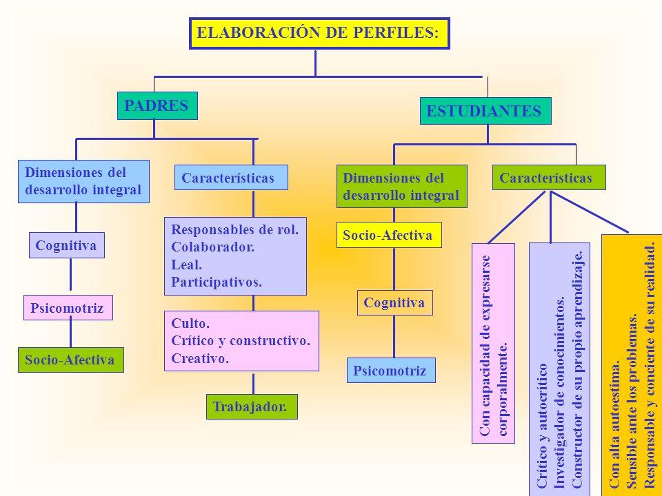 ELABORACIÓN DE PERFILES: