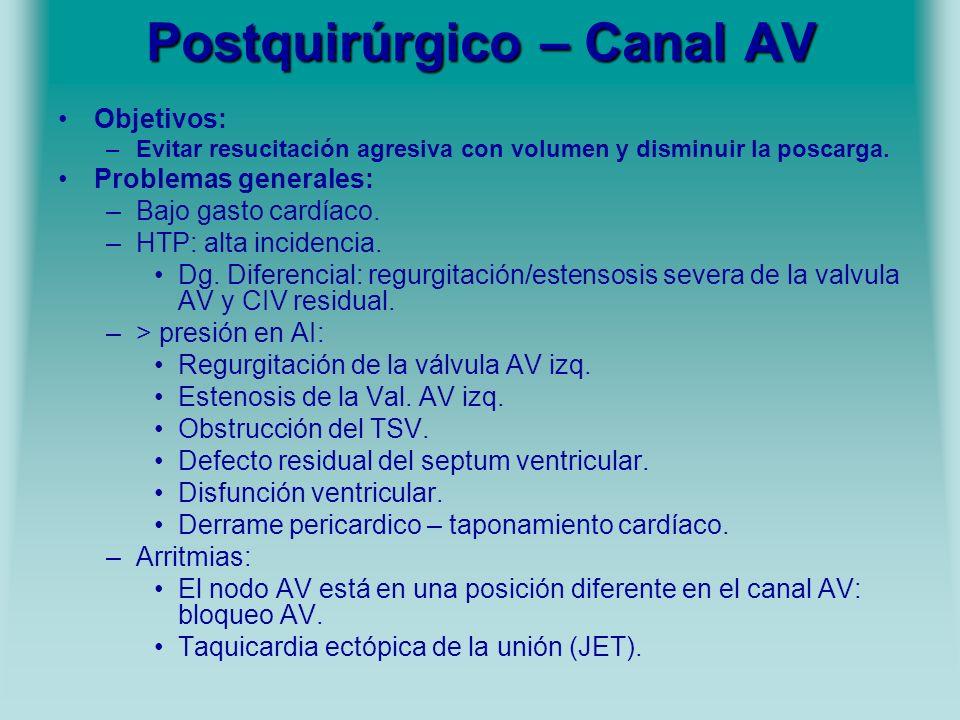 Postquirúrgico – Canal AV