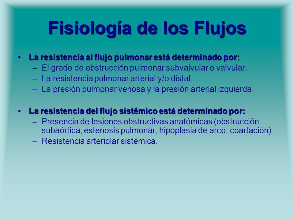 Fisiología de los Flujos